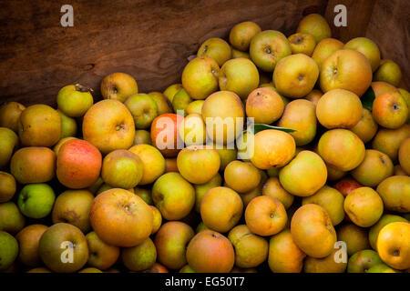 Grand groupe de patrimoine fraîchement récolté les pommes vertes dans la caisse Banque D'Images