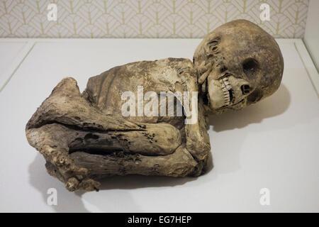 Enfant ratatinée du Pérou, 15C; Musée de l'homme; le Balboa Park, San Diego, Californie, États-Unis Banque D'Images
