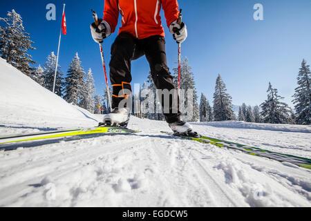 Femme ski de fond du Gantrisch, salon, Berner Oberland, Canton de Berne, Suisse Banque D'Images