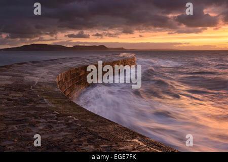 Un lever de soleil sur l'Cobb à Lyme Regis, dans le Dorset. Banque D'Images