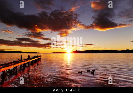 Au lever du soleil le lac Rotorua, île du Nord, Nouvelle-Zélande Banque D'Images