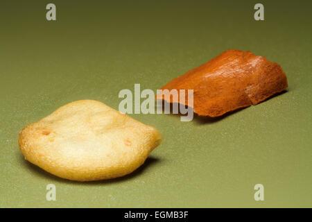 Piment rouge broyé, les semences et la peau, macro photographie Banque D'Images