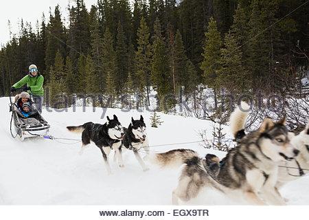 Traîneau à chiens de la famille dans la neige Banque D'Images