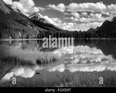 Les nuages et la réflexion dans les lacs de la sauvagine. Le parc national Banff. L'Alberta. Le Canada. Banque D'Images