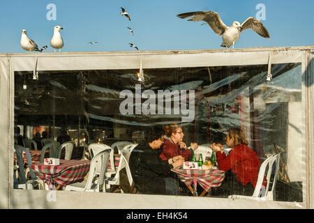La Turquie, Istanbul, quartier de Karakoy, les clients d'un restaurant couvert sur le Bosphore près du pont de Galata Banque D'Images