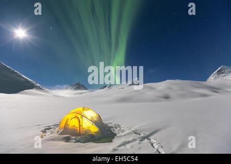 Jaunâtre à Nallostugan hut, Kiruna, Suède, Europe du Nord, de l'UNION EUROPÉENNE Banque D'Images