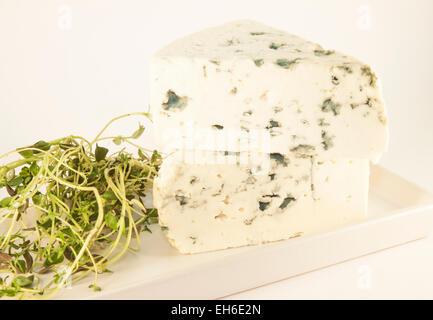Deux triangles de fromage bleu et le thym, isolé sur fond blanc Banque D'Images