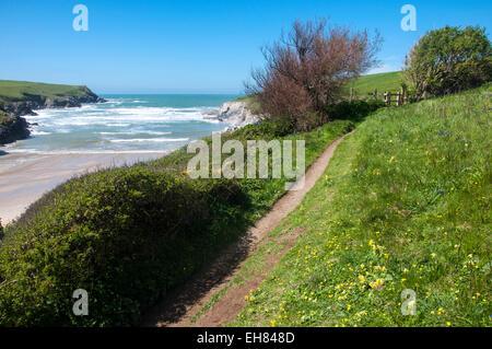 Polly Joke/blague Porth beach près de Newquay en Cornouailles. Un jour de printemps ensoleillé avec le sentier du Banque D'Images