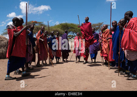 Un groupe d'hommes Massaï participant à la traditionnelle danse Adumu communément appelé Jumping danse exécutée Banque D'Images