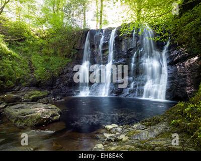 Glenariff Forest Park, Cascade, ,Les Glens d'Antrim, en Irlande du Nord Banque D'Images