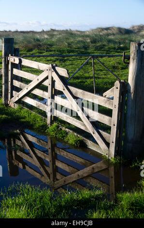 La porte en terrain inondé, Wairarapa, Glenburn, île du Nord, Nouvelle-Zélande Banque D'Images