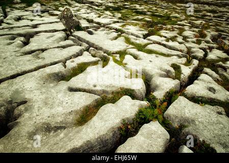 Rock formation karstique près de la tombe mégalithique de Poulnabrone appelé. Le Burren, Irlande Banque D'Images