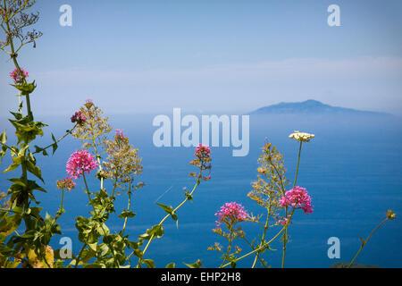 Vue imprenable sur le Vésuve depuis le sommet du Monte Solaro, Capri, Baie de Naples, Italie Banque D'Images