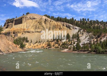 La rivière Yellowstone, le Parc National de Yellowstone, Wyoming, États-Unis d'Amérique. Banque D'Images