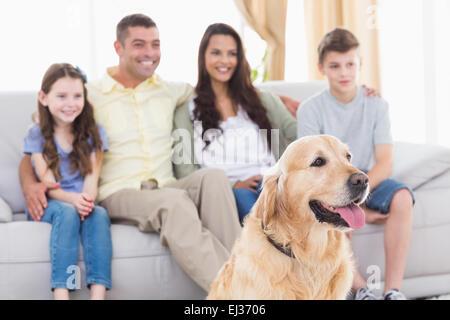 Chien de famille et de regarder la télévision ensemble Banque D'Images