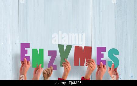 Image composite de mains tenant des enzymes de Banque D'Images