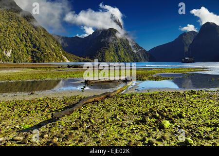 Milford Sound, île du Sud, Nouvelle-Zélande Banque D'Images