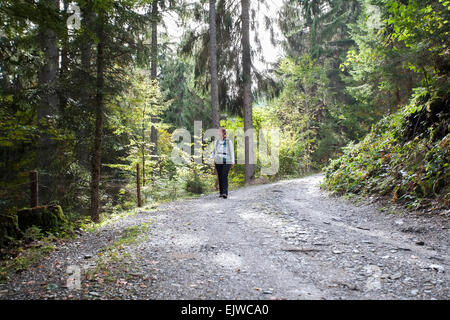 L'Autriche, Salzburger Land, Maria Alm, Woman hiking in forest Banque D'Images