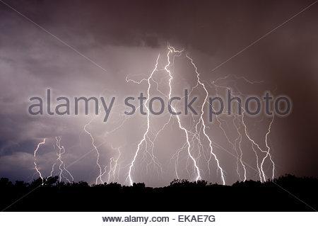 La foudre dans le désert au nord de Tucson Arizona dans un orage de type mousson d'été.La pluie qui tombe dans le Banque D'Images