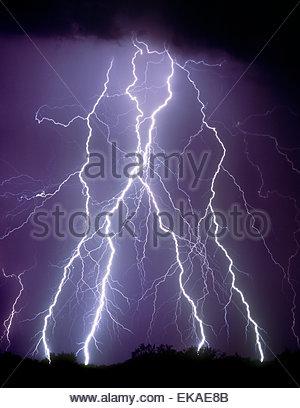 D'énormes éclairs dans le désert au nord de Tucson Arizona près de Picacho Peak d'un orage de mousson sumer. Ciel Banque D'Images