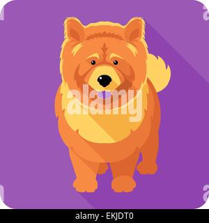 Dog chow-chow design plat icône Banque D'Images