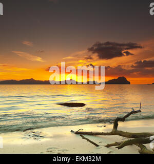 Coucher de soleil sur l'île. Arbre Sec sur l'avant-plan Banque D'Images