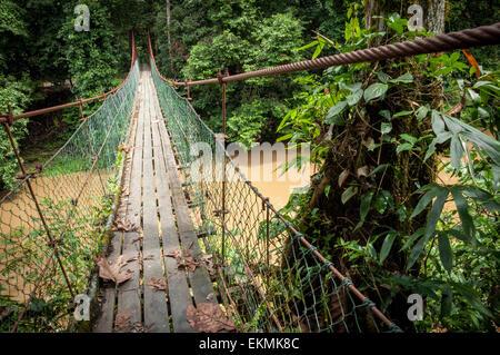Pont sur une rivière dans la zone de conservation de la vallée de Danum, Bornéo, Malaisie Banque D'Images