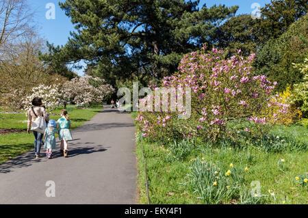 Les personnes bénéficiant du beau temps dans les jardins botaniques royaux de Kew, Londres Angleterre Royaume-Uni Banque D'Images