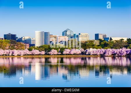 Washington, D.C. au Tidal Basin pendant la saison des cerisiers en fleur avec le district d'affaires de Rosslyn citycape.