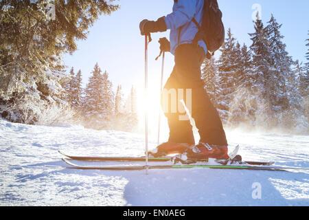 ski Banque D'Images