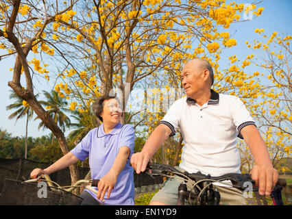 Happy senior couple dans le parc Banque D'Images