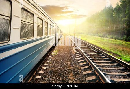 Billet de train à travers la forêt de pins au coucher du soleil Banque D'Images