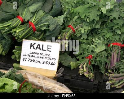 Les paquets de Kale 'lacinato, rouge-bleu russe gondolé' sur l'affichage pour la vente en $ dollars par paquet à Farmers Market Embarcadero San Francisco USA
