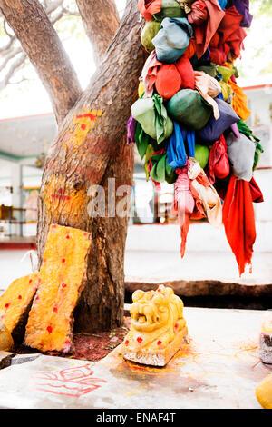 Arbre des désirs et de culte en Durgadevi Anegundi, Temple.