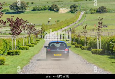 Location de montée d'une route privée entre les champs de la campagne britannique. Banque D'Images
