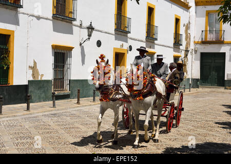 Paire de chevaux blancs avec pompons sur la tête tirant sur le transport dans la rue de Séville Espagne Banque D'Images