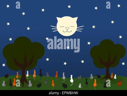 Cat cat à la lune dans une belle nuit étoilée cartoon illustration Banque D'Images