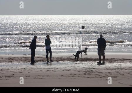 Commérer parler d'ossature Dog Walkers contre soleil sur l'eau Compton Bay Ile de Wight Angleterre UK People socializing Banque D'Images