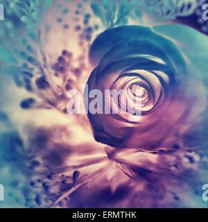 Fond rose rêveuse, abstract floral coloré festif et élégant carte carte de vœux, papier peint fleurs étonnantes Banque D'Images