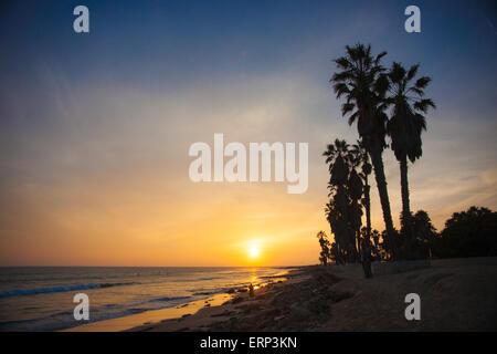 Coucher de soleil à côté d'une rangée de palmiers sur la côte sur l'océan Pacifique. Banque D'Images