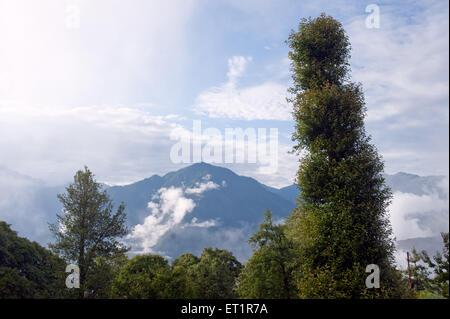 Paysage de vallée en pithoragar Asie Inde uttarakhand Banque D'Images