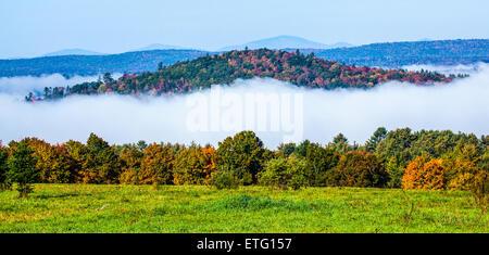 Petite colline avec feuillage automne coloré avec une faible brume du matin apparaît comme une île flottante à Landaff, Banque D'Images