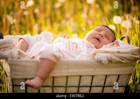 Baby Girl sleeping dans un panier dans un champ de crocus Banque D'Images