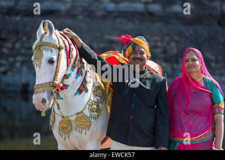 Chevaux Marwari. Cheval blanc dominant recouverts d'or, d'argent et de bijoux avec ses fiers propriétaires. Le Rajasthan, Banque D'Images