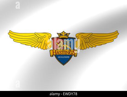 Icône logo aviation hastings symbole du drapeau emblème sign