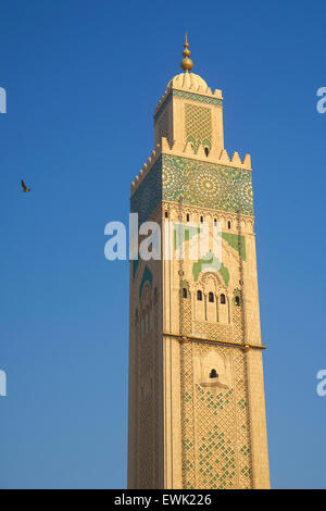 Mosquée Hassan II, Casablanca, Maroc, Afrique Banque D'Images