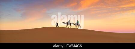 Les touristes en randonnée chamelière au coucher du soleil, désert Erg Chebbi près de Merzouga, Sahara, Maroc
