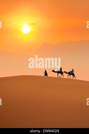 Les touristes en randonnée chamelière au coucher du soleil, désert Erg Chebbi près de Merzouga, les dunes du Sahara, le Maroc