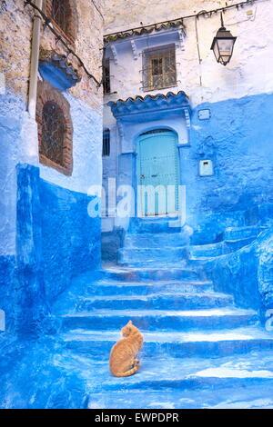 Chefchaouen (Chaouen). Est connu pour ses bâtiments dans des tons de bleu. Maroc Banque D'Images