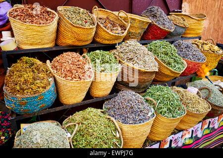 Herbes et épices locales traditionnelles, le Maroc, l'Afrique Banque D'Images